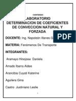 Laboratorio Official CONVECCION