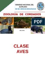 Zoolog%c3%8da de Cordados - IV.pptx