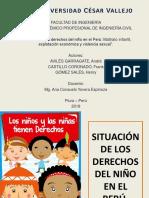 Situacion de Los Derechos Del Niño - Constitucion