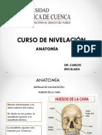 1 -2 Osteologia y Artrologia