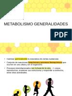 Metabolismo g