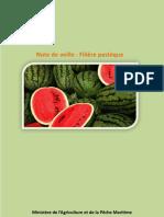 140903-Note Veille Strategique Pasteque