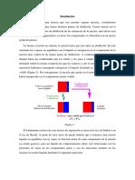 Destilacion_teoriafermentacion.pdf