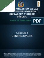 Codigo Organico de Las Entidades de Seguridad Ciudadana