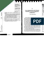 vasilachis.pdf