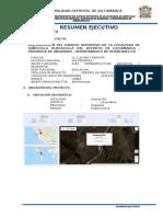 Resumen Ejecutivo FINAL.docx