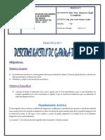 DETERMINACION DE GAMMA DEL AIRE - VERA ESPINOZA ANGEL 19-07-17.docx