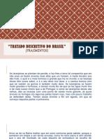 Tratado descritivo.pptx