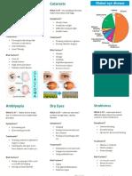 brochure ism eye diseases