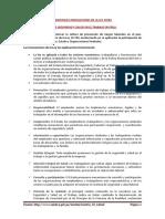 Resumen de La Ley 29783 Peru