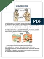 Sistema Endocrino, entre otras cosas Con Bibliografia