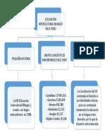 Mapa Mental de La EIB