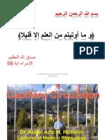 Capillary Circulation I