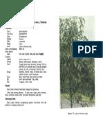 1-175(1).pdf
