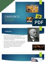 1. CARBUNCO