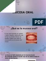 Mucosa Oral