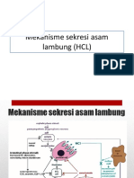116028_144624_Mekanisme Sekresi Asam Lambung (HCL)