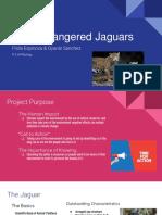 endangered jaguars