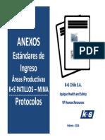 140211 Estandares de Ingreso_Areas K+S.pdf