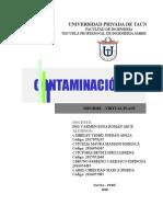 Informe Virtual Plant - Grupo 1