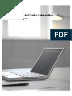 Manual Seguridad Basico PDF Sia