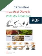Unidad Educativa Municipal Otavalo Valle Del Amanecer