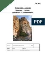 Laboratorio 10 Rocas Sedimentarias - Faltan Imagenes