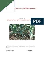 Proyecto Productivo Cebolla de Verdeo Organica-FINAL