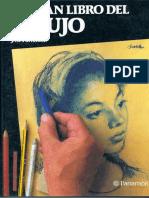 DIBUJO ARTISTICO II -  LIBRO DE DIBUJO.pdf