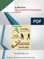 Acompañamiento Pedagogico, Observacion de Clase.