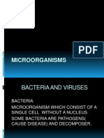 Bacteria and Viruses