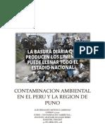Contaminacion Ambiental en El Peru y La Region de Puno