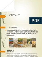 CEREALES.pptx