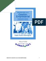 Dominguez Rubio - Introduccion A La Gestion Empresarial.DOC