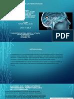 1trabajogrupal_ Estudio Del Caso Neurocisticercosis (2)