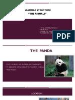 El Panda Antonio