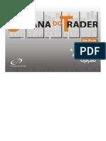 DocGo.net-A Composição Do Preço Da Opção (Leandro &Amp; Stormer)