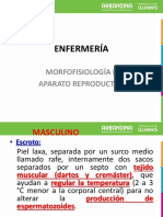 Reproductor.pdf