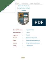 Informe 01 Galla