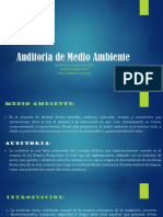 Auditoria de Medio Ambiente