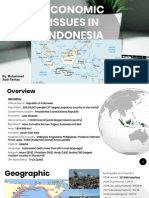 Economic Issues in Indonesia