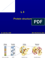 L3 Protein Structure