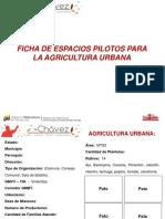 Ficha Siembra Urbana2 (1)