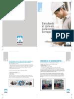 costo generacion de vapor.pdf