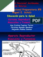 s Reproductor Fem y Masc