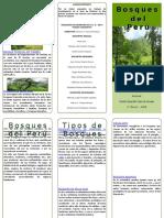 386226246 Triptico Bosques Del Peru