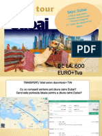 Proiect DUBAI
