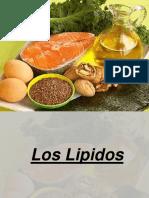 LIPIDOS exposicion.pptx