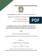 Comportamiento de la presión en pozos de Yacimientos Naturalmente Fracturados con efectos de fronteras, mediante pozos imagen.pdf