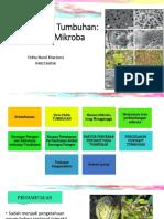 4 Stress Serangan Mikroba